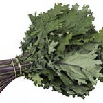 220px-CSA-Red-Russian-Kale